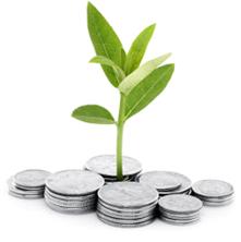 お金、植物育つ.PNG